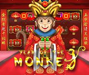 Year of the Monkey H5